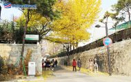 pho-samcheong-dong-dia-diem-ngam-la-vang-tuyet-dep-mua-thu-han-quoc-2
